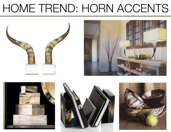 Home trend horn accents mountain home decor for Mountain home design trends