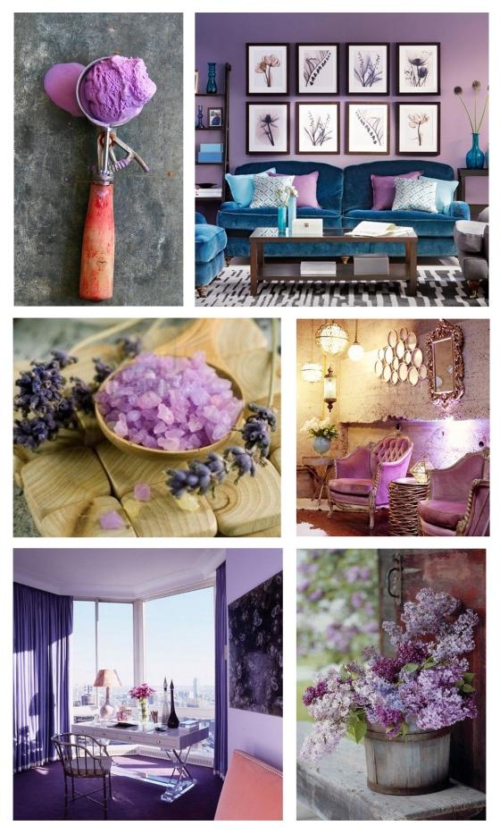 mhd_cotm_purple hyacinth_2
