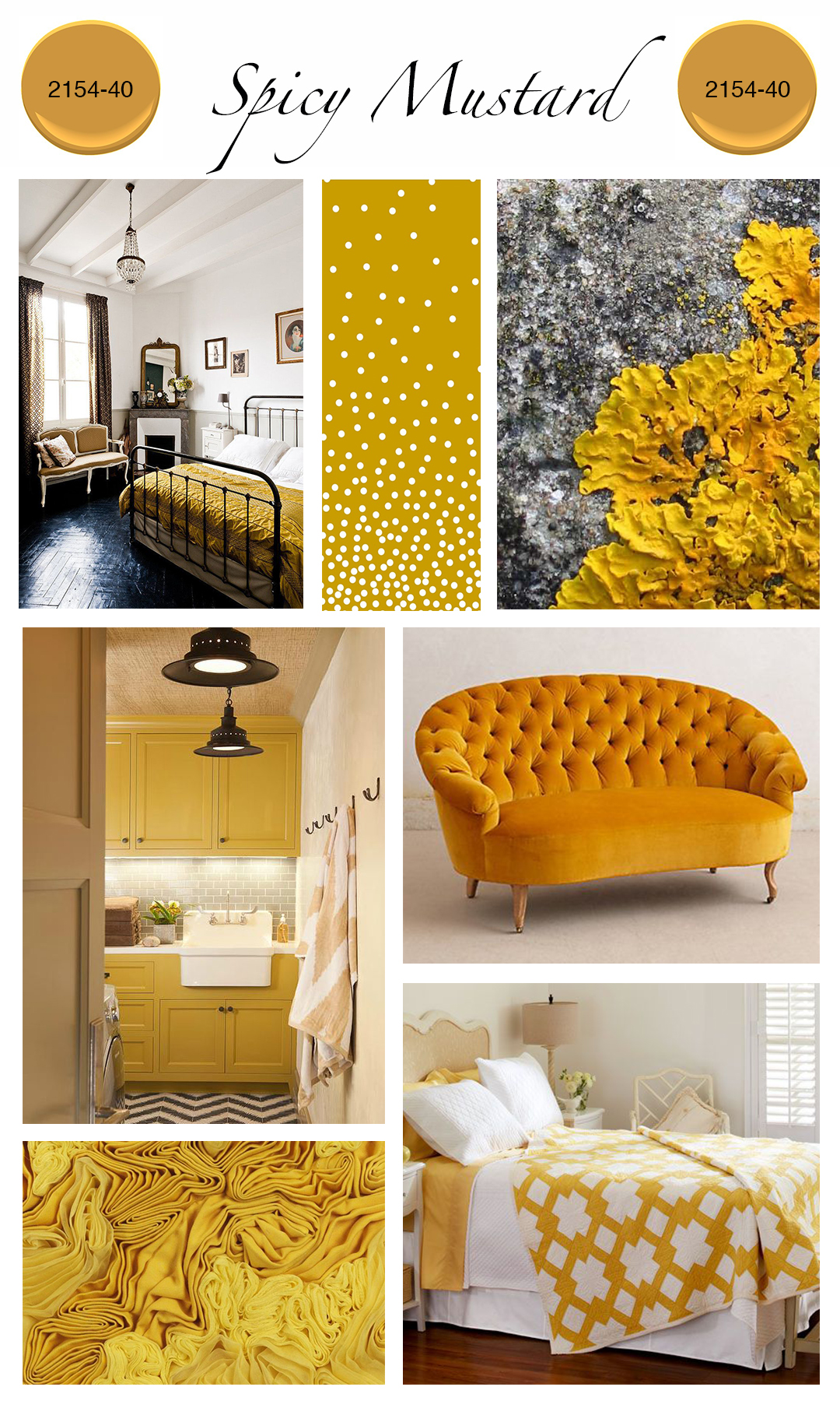 Mustard home decor 28 images 28 mustard seed home for Mustard yellow decor