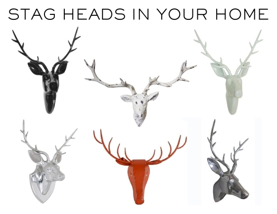 MHD_stag heads_avail