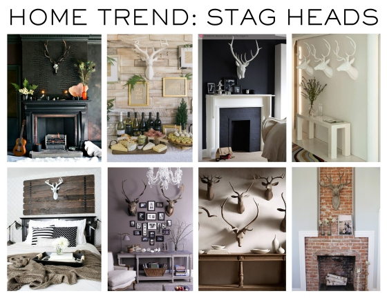 MHD_stag heads_insp